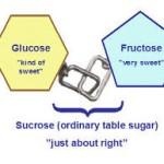 fructose1-150x150